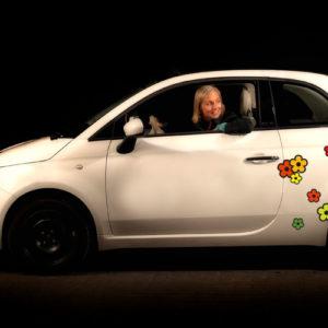 Klistermærker til bil - hippie blomster
